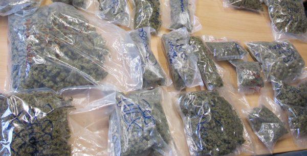 polizei-sichergestellte-cannabisblueten