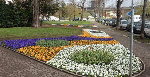 Leisniger Platz Blumen