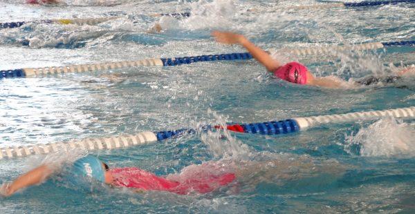 schwimmhalle pieschen neustadt