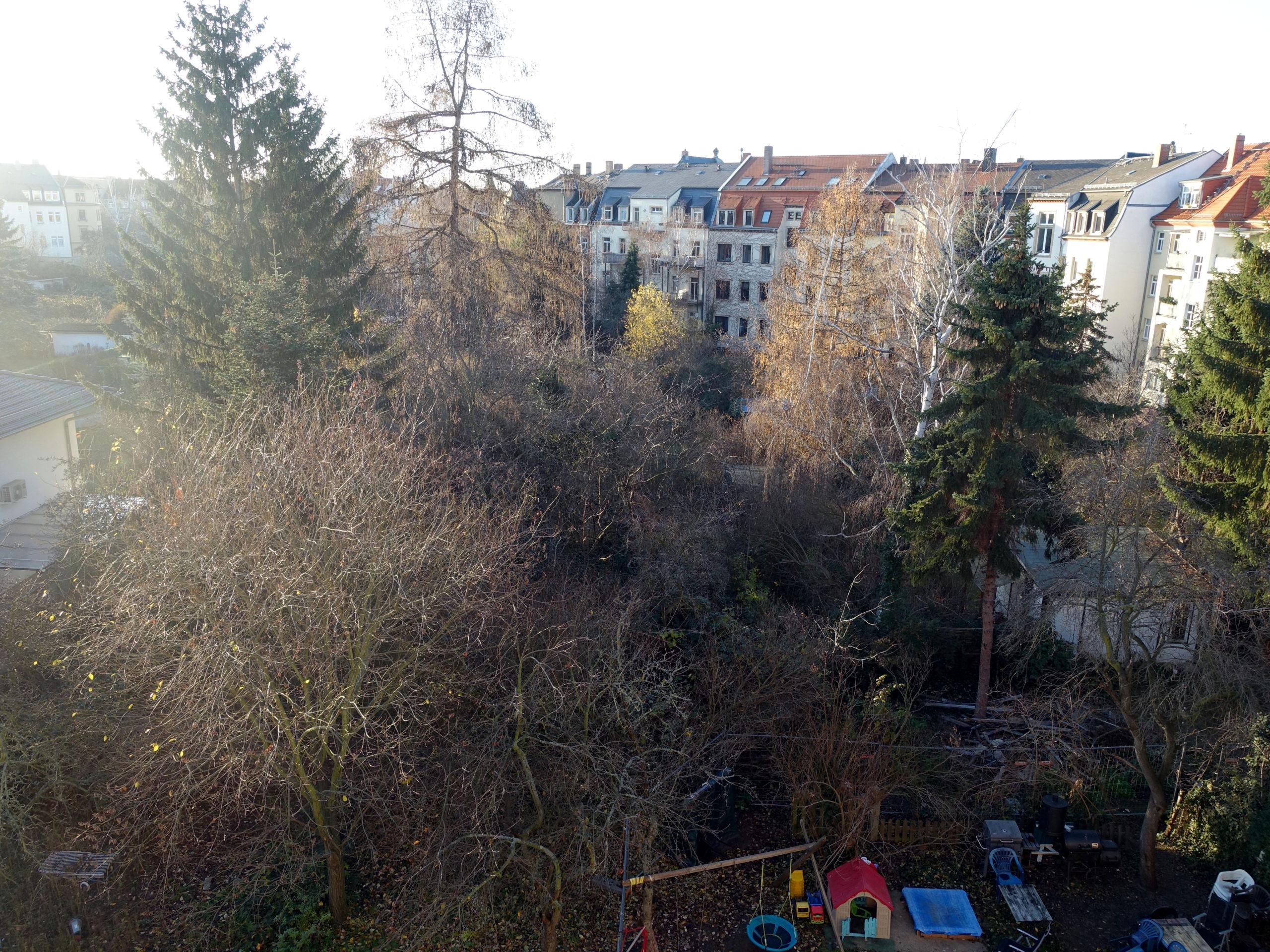 Tichatscheckstraße 37 Gruen